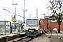 """Stadler Pankow 37126 - PRESS """"650 032-4"""" 31.01.2016 - Bergen (Rügen), BahnhofPeter Wegner"""